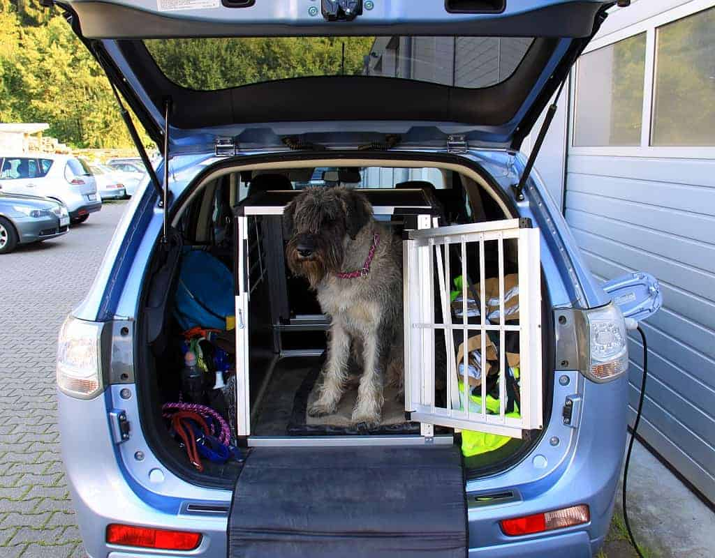 ratgeber tiertransport im auto die hundebox bosch car. Black Bedroom Furniture Sets. Home Design Ideas